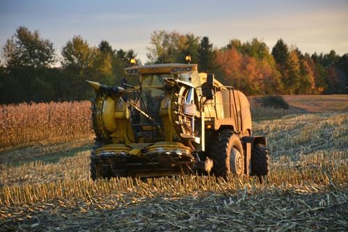 activité agricole à Saint Praxède