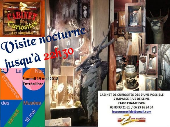 Le Cabinet de Cusiosités des Z'Uns Possible sera ouvert pour la nuit des Musées !
