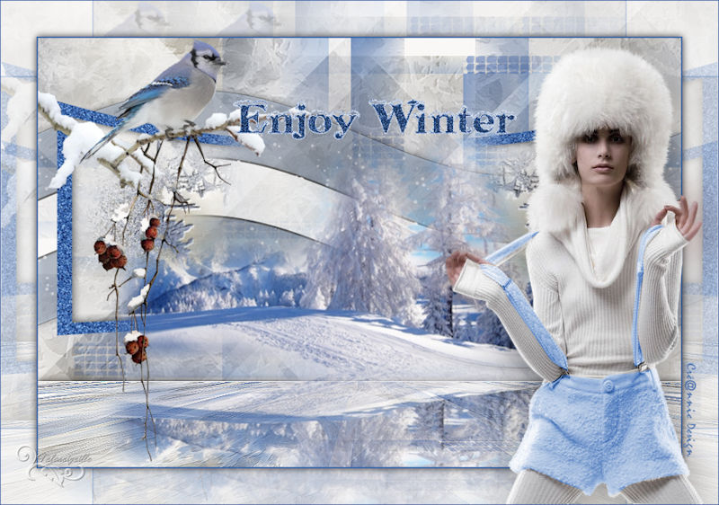 *** Enjoy Winter ***
