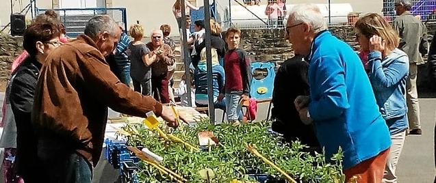 Plus de 700 personnes ont visité la foire aux plantes, samedi.