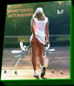 Les moustiques attaquent (Humour)