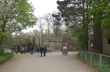 Zoo Osnabruck d50 2012 257