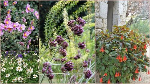 Les jardins de Coursiana (Automne 2016)