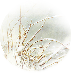 Kit hiver (21)