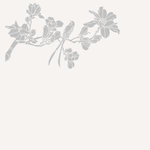 """Résultat de recherche d'images pour """"image google lotus fleurs"""""""