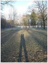 L'homme et son ombre par Mamin