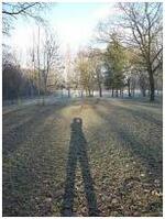 jeu d'ombre et de lumière par Mamin