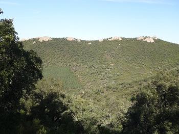 Au Nord, les rochers sur la crête du Clau de Barrau