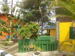 l'île de Tobago (suite)