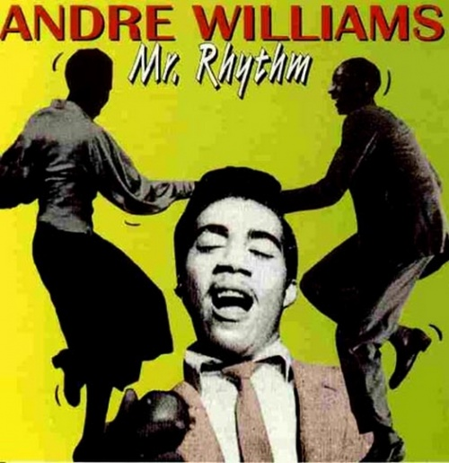 Andre Williams : Just Want A Little Lovin'