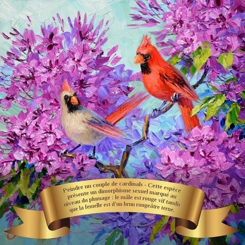 Dessin et peinture - vidéo 3636 : Un couple de cardinals dans un décor de pruniers en fleur - huile, acrylique.