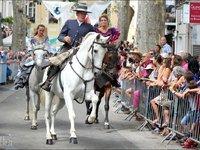 Toutes les races de chevaux sont aptent à la doma vaquera.
