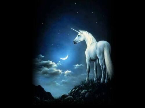 Le secret de la licorne.................