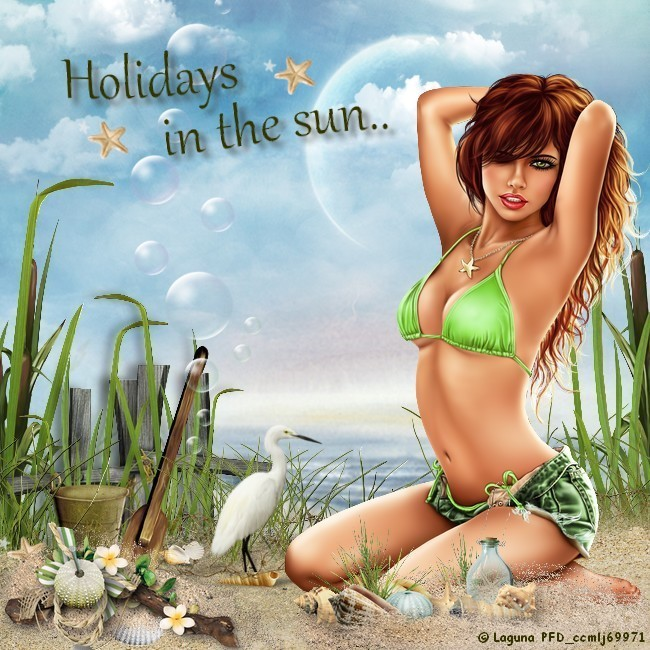 Holidays in the sun