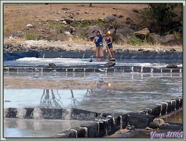 Blog de images-du-pays-des-ours : Images du Pays des Ours (et d'ailleurs ...), Les salines habillées de roches volcaniques - Tamarin - Ile Maurice