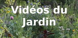 - REGARDER LES VIDEOS du jardin