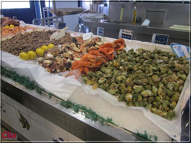 Etaples - Le port, la Canche, et les produits de la mer.