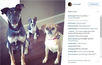 Jana Kramer sur Instagram  I love my babies ! #nationaldogday - Google Chrome_2015-08-26_22-10-24