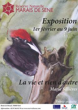 La vie et rien d'autres - Exposition à la Réserve Naturelle Marais de Seine
