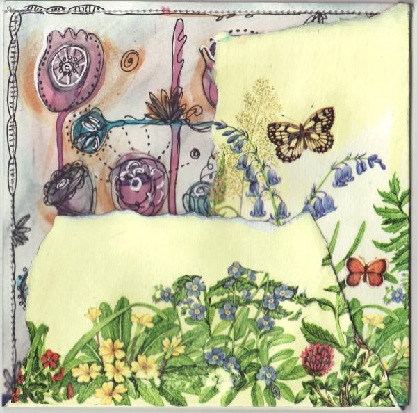 Jardins extraordinaires, version 2 - couverture