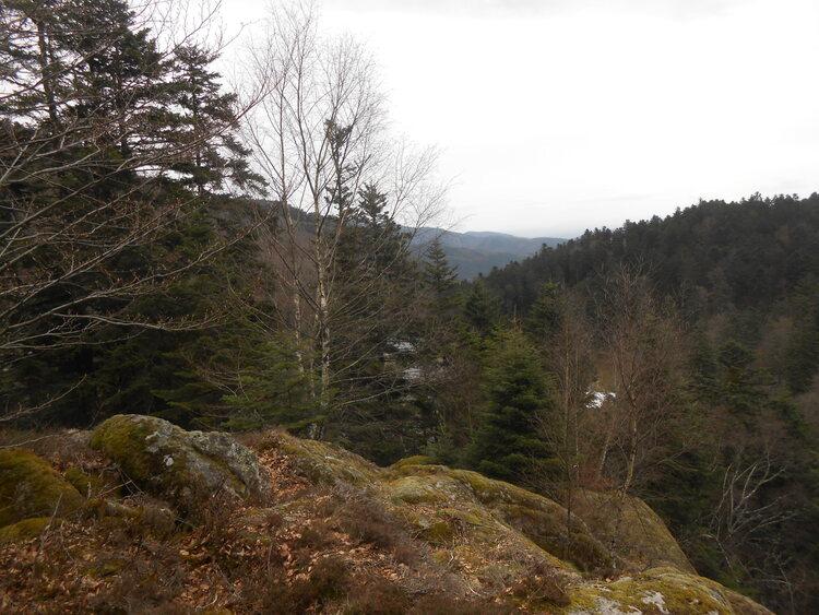 Vosges- Le lac des perches et les Neuweiher