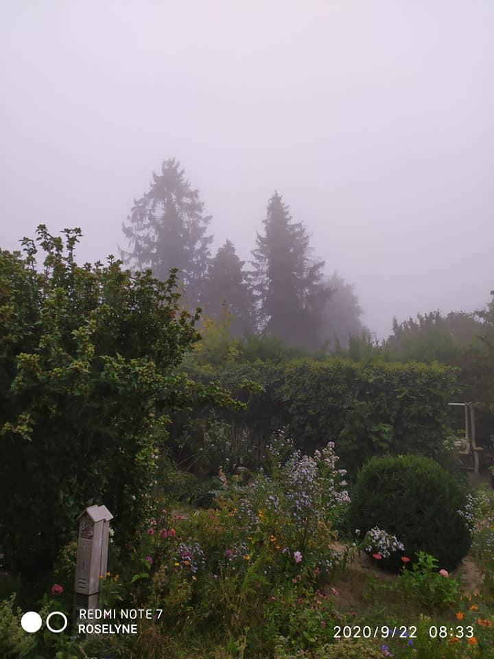 Le beau temps ce matin