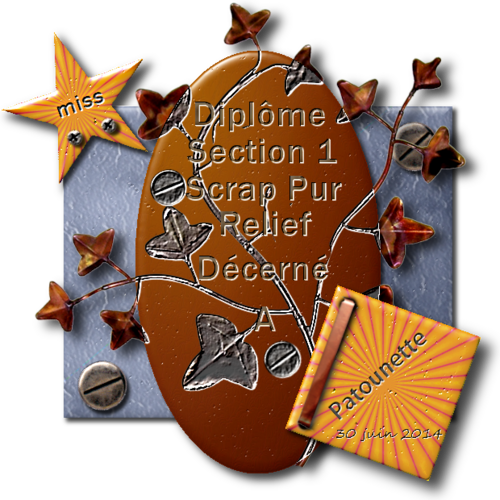 Diplômes Scrap Digital Pur Relief