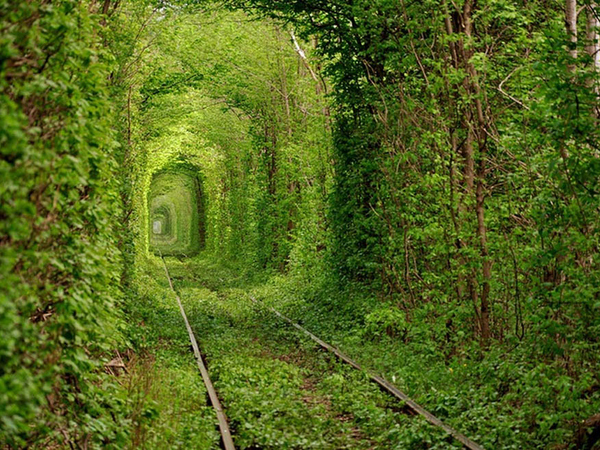 Tunnel de l'Amour, Ukraine