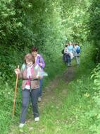 La randonnée du 19 juin à Saint-Germain-le-Vasson