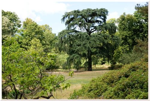 La Vallée-aux-Loups. Parc de la Maison de Chateaubriand