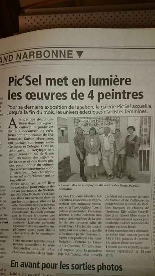 article du 18 oct 2014 sur mon expo a la galerie Pic'Sel