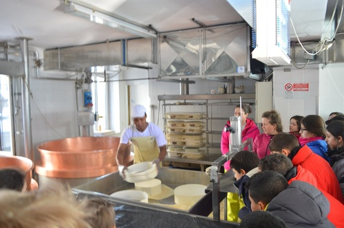 Notre visite d'une fromagerie local