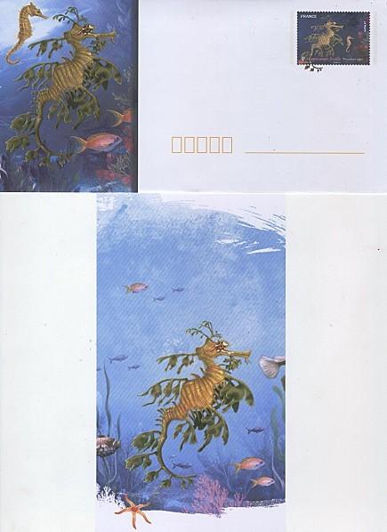 enveloppe-PAP-et-carte-hippocampe.jpg