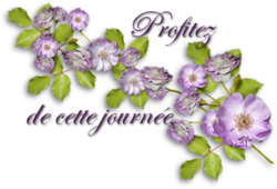 ♥♥ SENTEUR DE ROSE ♥♥