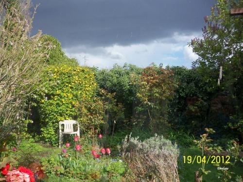 Entre deux giboulées..... un tour au jardin
