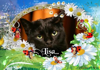 Au revoir Paprika, au revoir Lisa