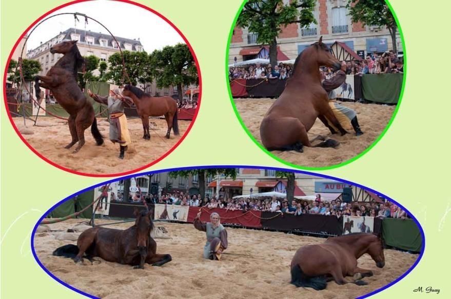 chevaux-bruns.jpg