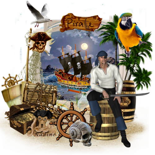 l ile aux pirates
