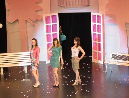 Défilés de mode durant l'élection de Miss Côte d'Or 2013