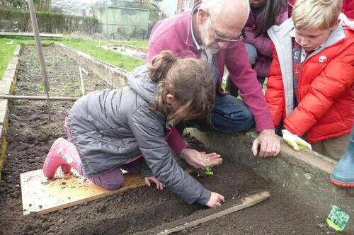 Nos semis au jardin eco-citoyen