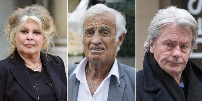 Une populaire écrivaine française annonce qu'elle est sur le point de se faire euthanasier