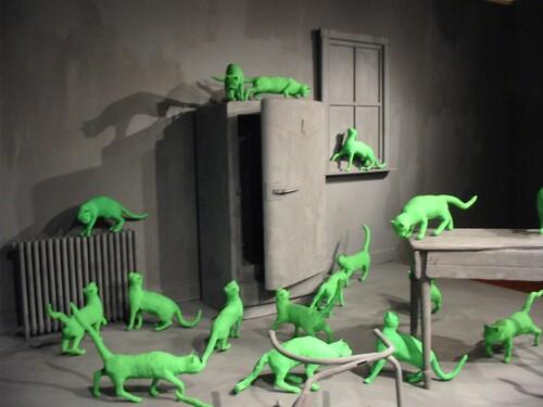 11 - Mises en scène avec chats