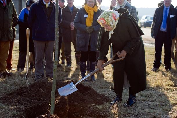 Elizabeth plante un arbre