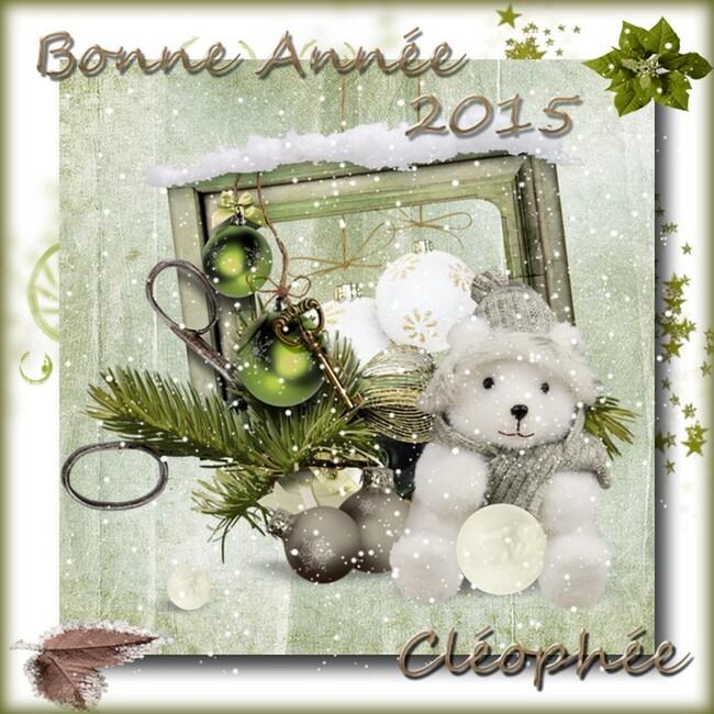 Bonne et heureuse année 2015 à TOUS !