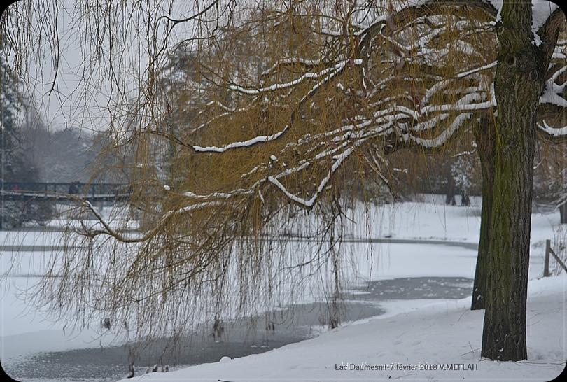 La neige de retour ce vendredi 9 février dans le nord de la France !