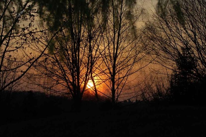 coucher-de-soleil-7401.jpg
