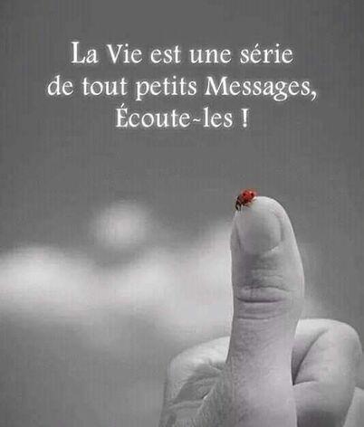 Pensées #Penséesdyjour #Pensée #Proverbe #Penséespositive #Portebonhour #Philisophie #Vivre #Momentpresent #Rêve #Sérénité #Citation
