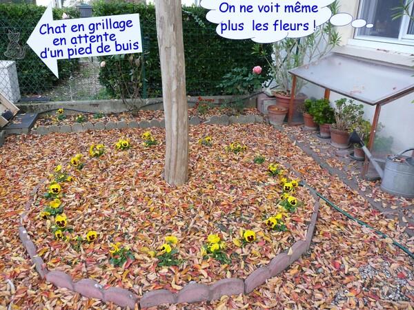 Une lettre pour Colibri et les feuilles du jardin