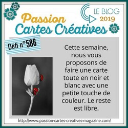 passion Cartes Créatives#586 !