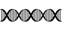 Semestre de biologie